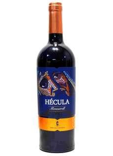 Vinho tinto Hécula